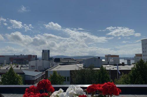 utsikten en vacker dag