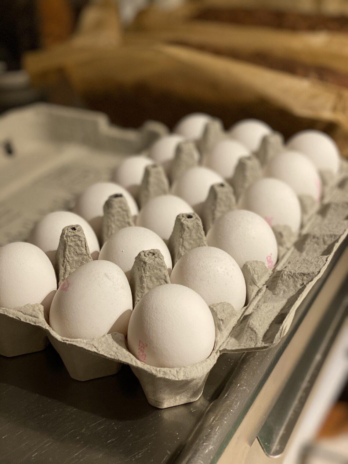 Vi älskar ägg